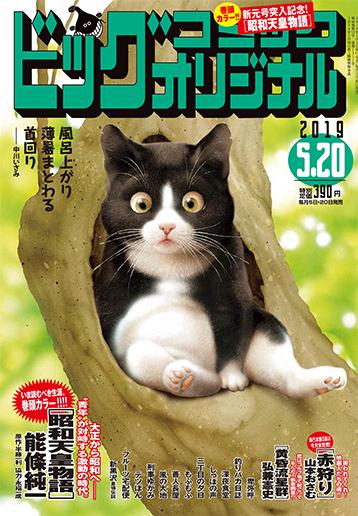 ビッグコミックオリジナル10号 2019年5月25日号