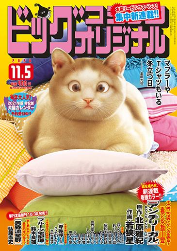 ビッグコミックオリジナル第21号